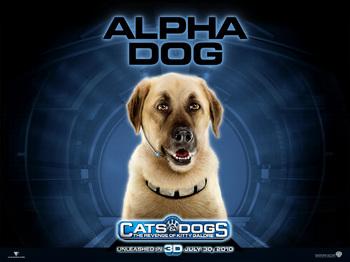 Cat&Dogs2.jpg
